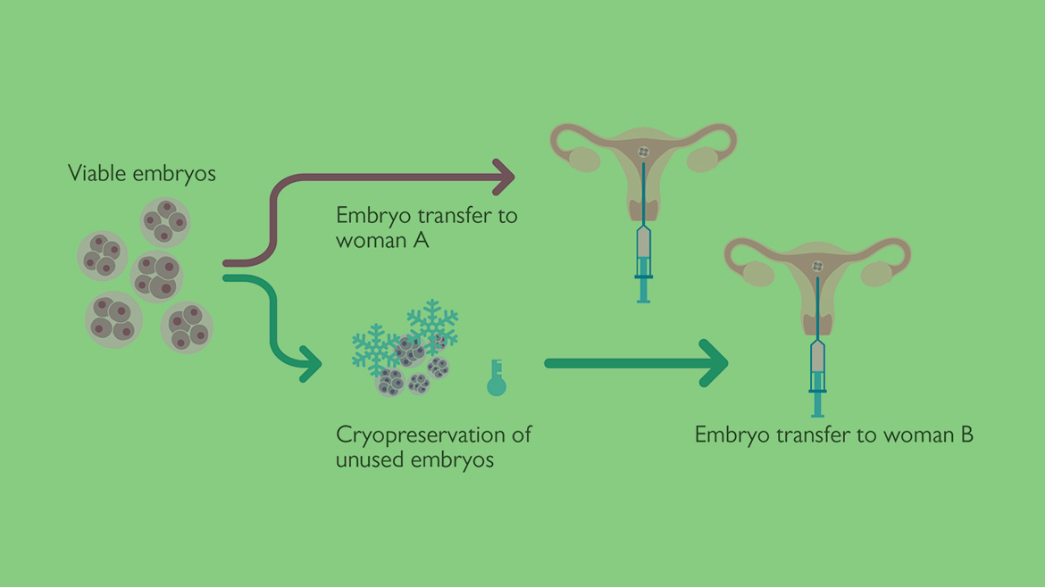 IVF with embryo donation